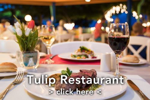 Tulip Restaurant
